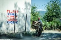 AlbanskiI-4795