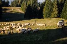 harnasie-wrzesien (58 of 65)